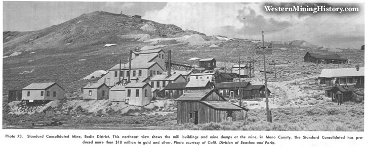 Standard Consolidated Mine, Bodie District
