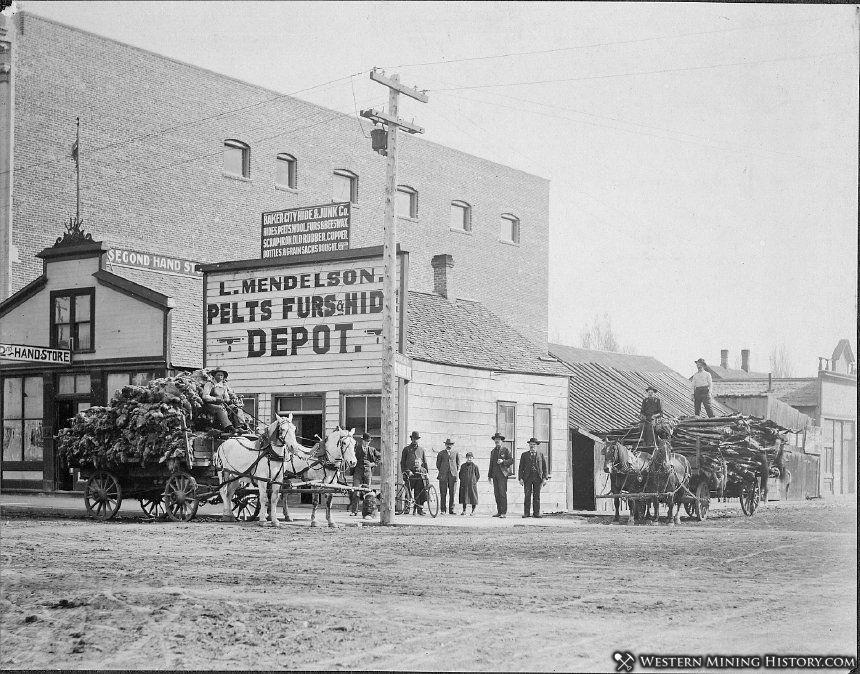 Mendelson's Pelts, Furs, & Hides Depot - Baker City, Oregon ca. 1905
