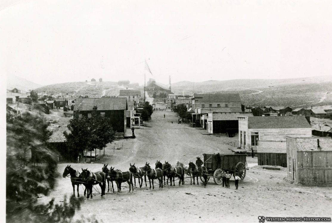 Wagon team in Candelaria, Nevada 1893