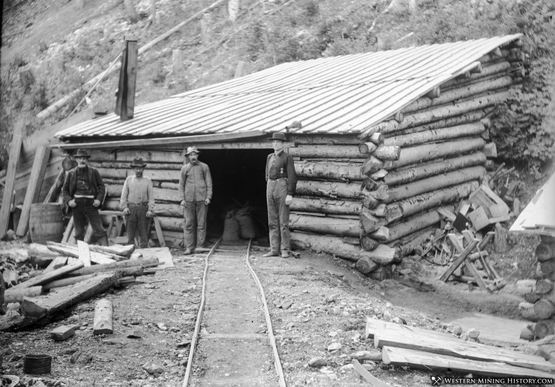 Forest Mine - Rico Colorado 1897