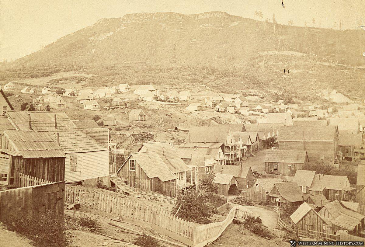 Forest City, California ca. 1880