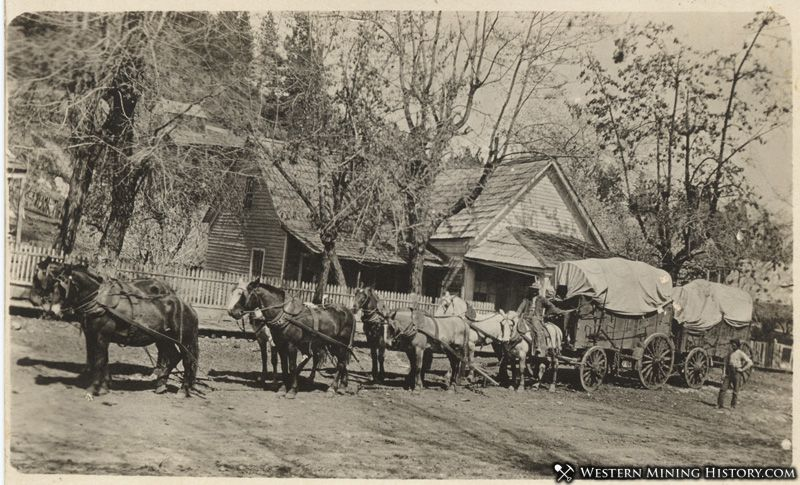 Freight team at Foresthill, California ca. 1910