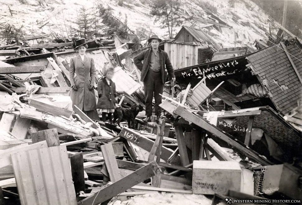 Dog inspects the Weekler family's home that demolished by a snowslide - Mace, Idaho 1910
