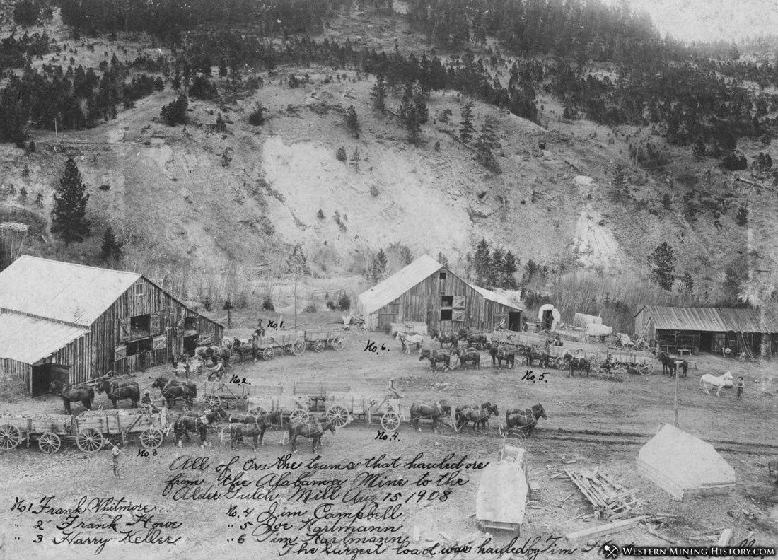 Freight teams hauling ore from Alabama Mine to Alder Gulch Mill - near Zortman 1908