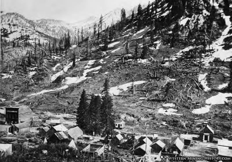 This 1873 photo shows the avalanche path above Alta