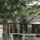 Antique Cabin - Gold Hill