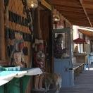 Oatman, Arizona