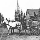Greenhorn City 1917