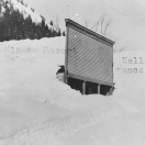 Deep Snow - Cornucopia