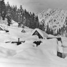 Snow Covered Houses - Cornucopia
