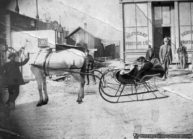 Dog at the reigns of a horse-drawn sleigh in Leadville, Colorado 1880s