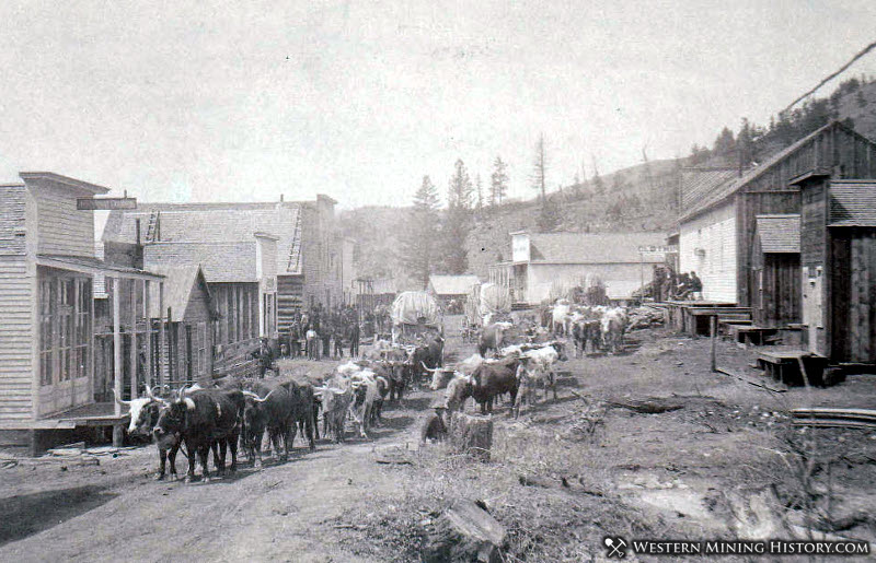Maiden Montana 1885