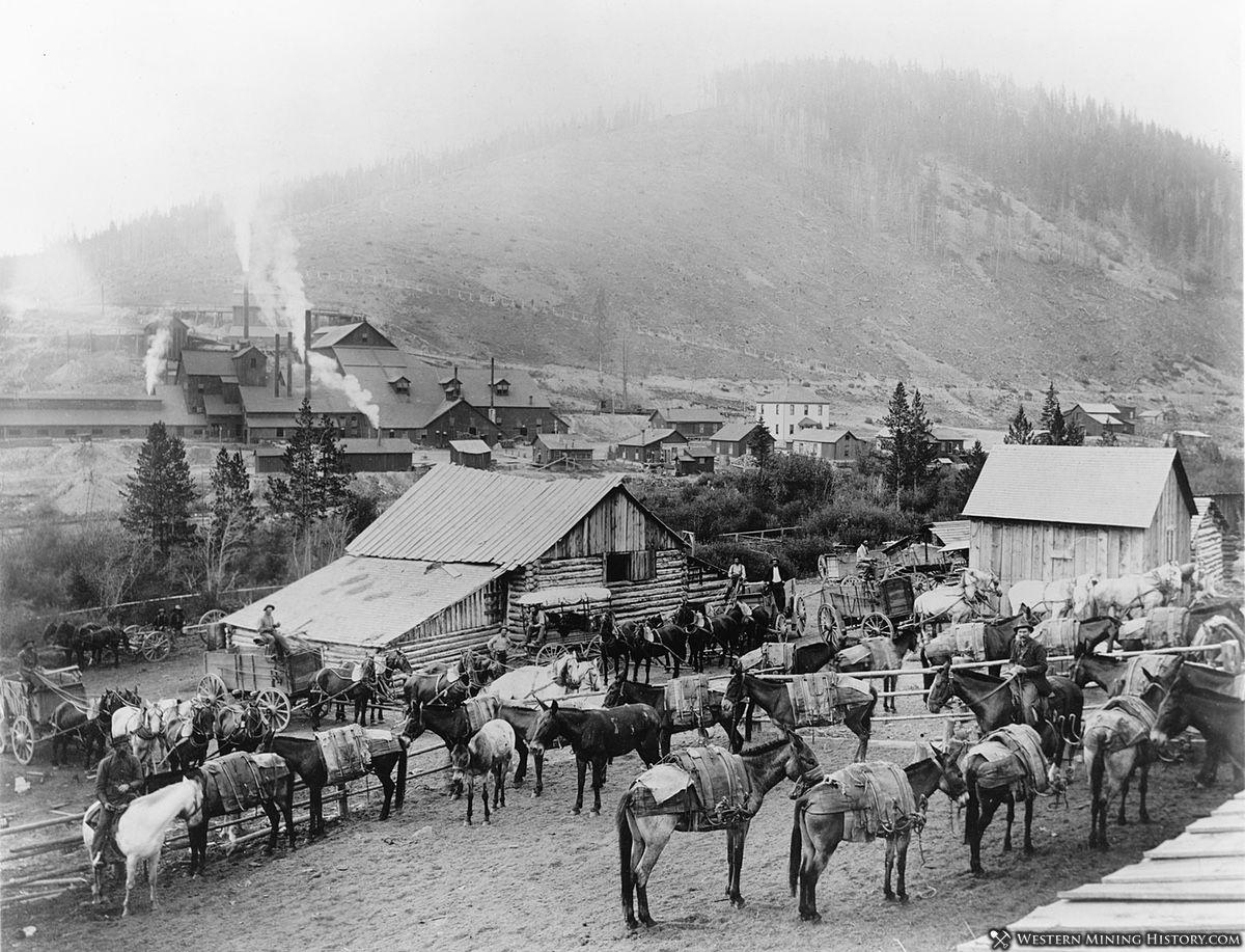 Pony Montana ca. 1892