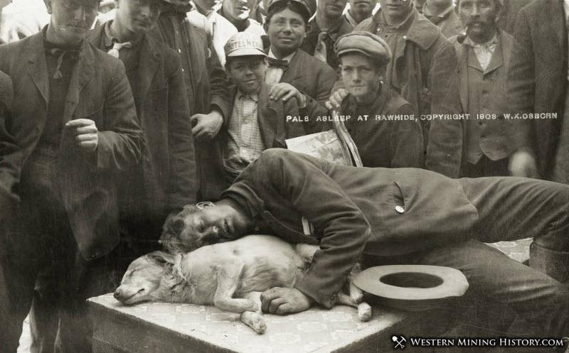 Man and dog asleep at Rawhide, Nevada 1908