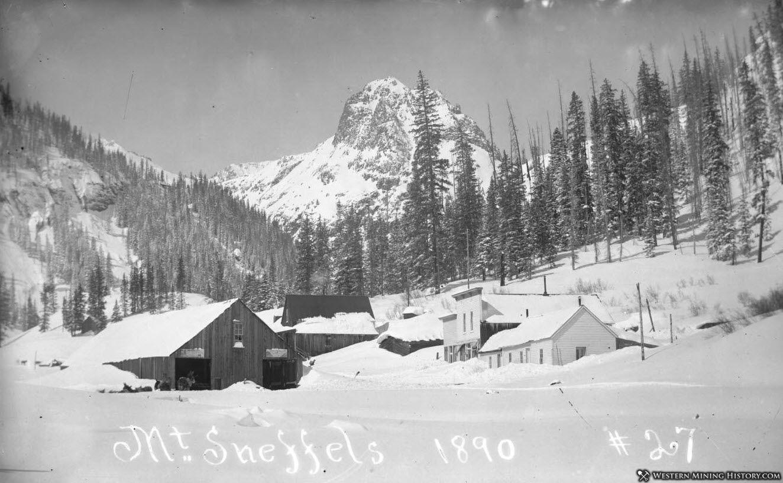 Sneffels Colorado with Mount Sneffels in the background 1890