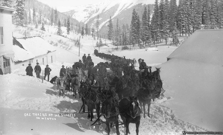 Ore wagon train at Sneffels ca. 1890