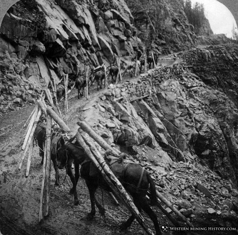 Trailing timbers from Telluride up to the Tomboy mine