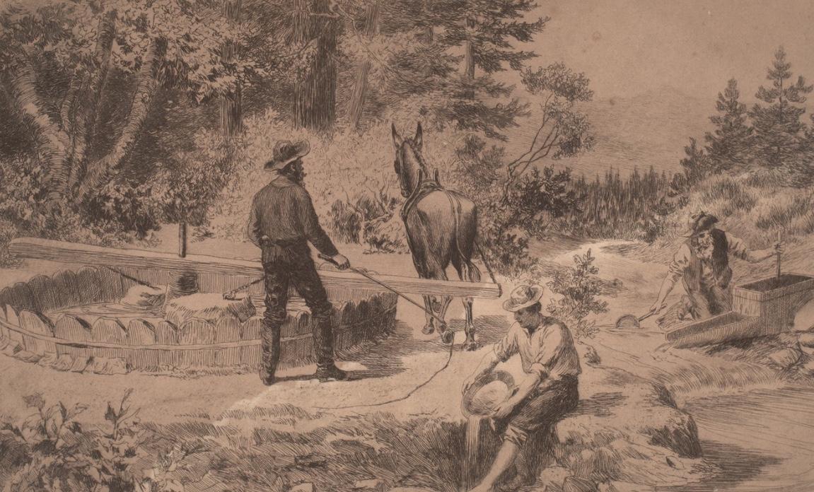 Gold Rush arrastra illustration