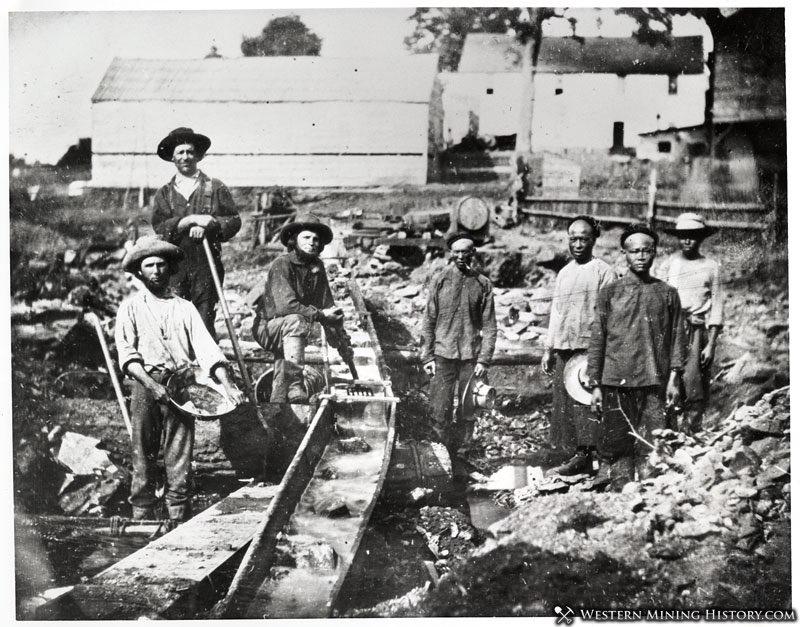 Miners at Auburn Ravine 1852