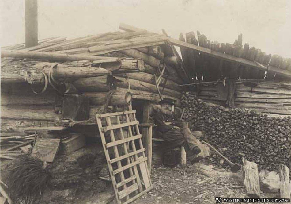 Miner at his driftwood cabin - Nome, Alaska ca. 1905