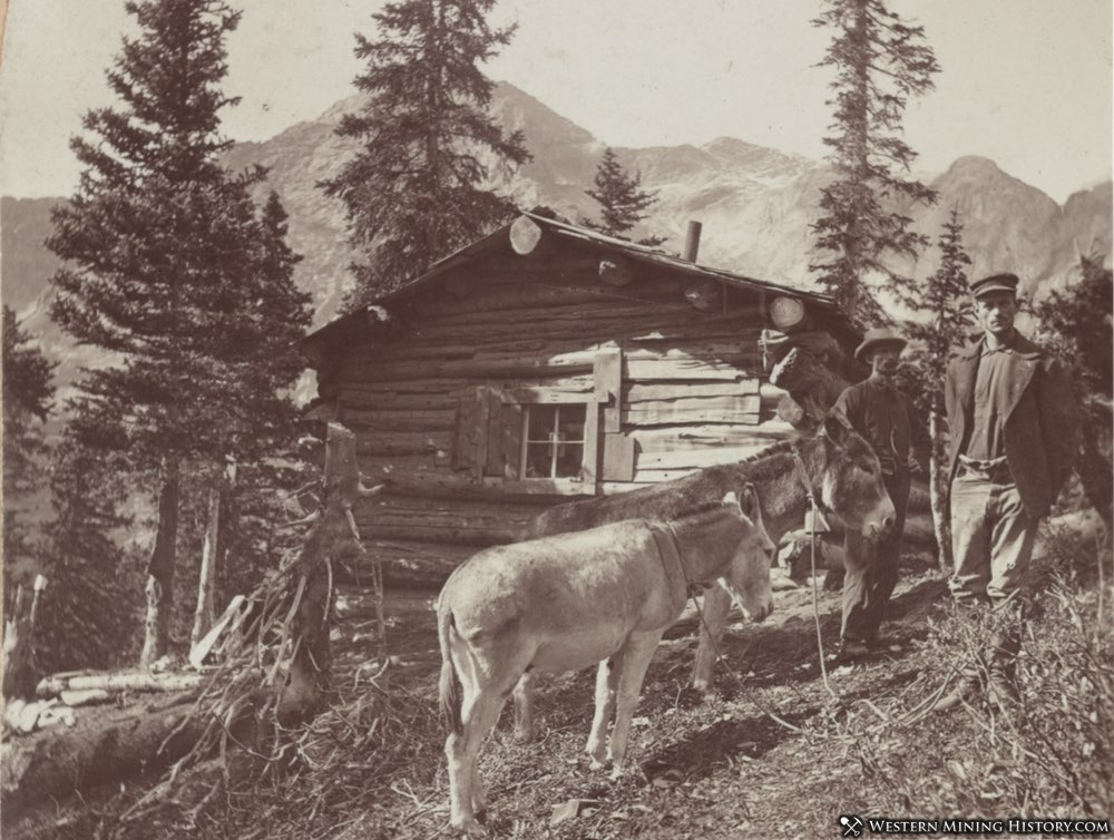 Miner's cabin somewhere in Colorado - 1898