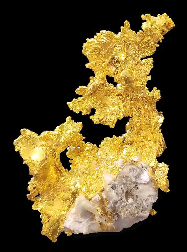 Native Gold perched on Quartz matrix