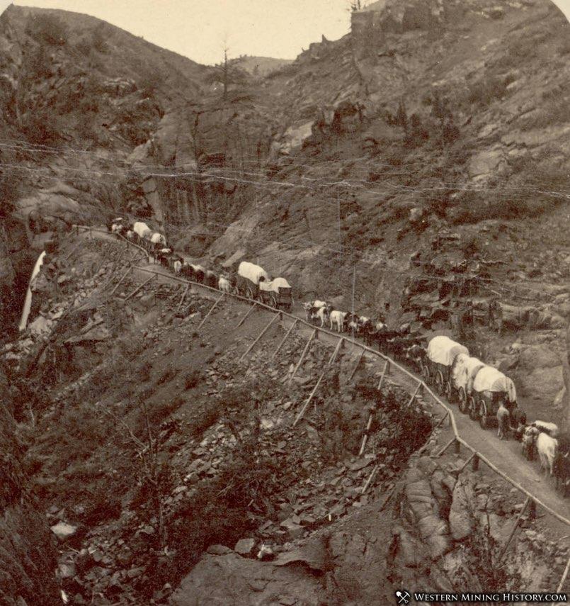 Freight wagons on Ute Pass Colorado 1878
