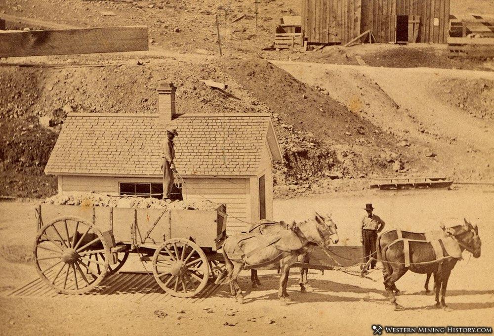 Ore wagon at Virgina City, Nevada ca. 1870