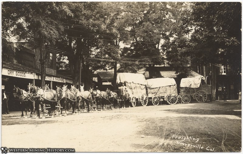 Freighting at Weaverville, California ca. 1900